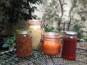 Homemade ferments