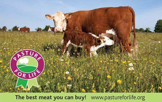 pastureforlife-homepage
